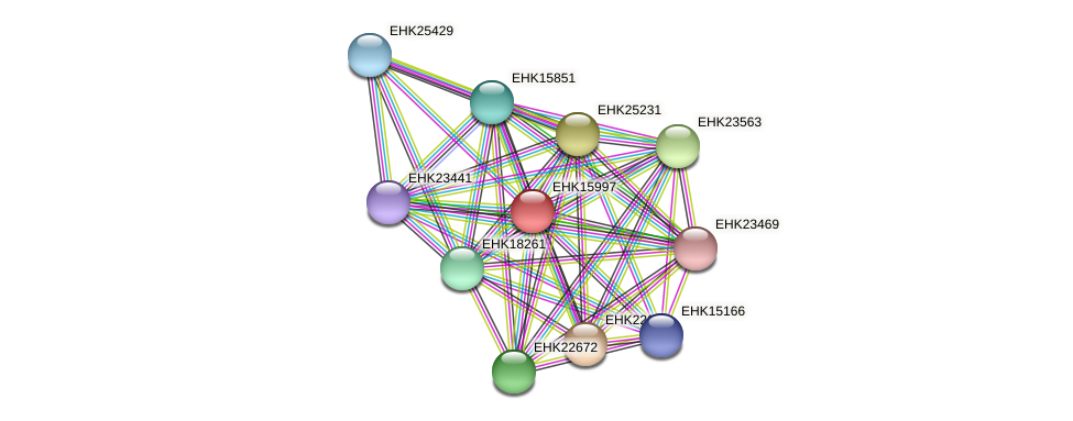 EHK15997 protein (Hypocrea virens) - STRING interaction network