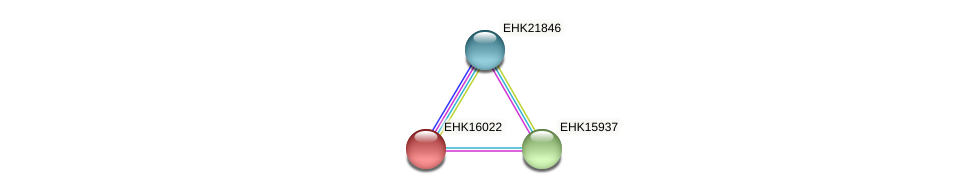 EHK16022 protein (Hypocrea virens) - STRING interaction network