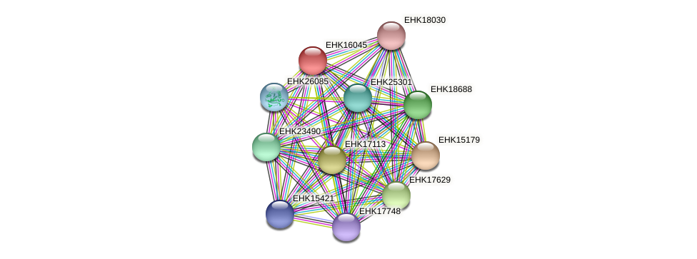 EHK16045 protein (Hypocrea virens) - STRING interaction network