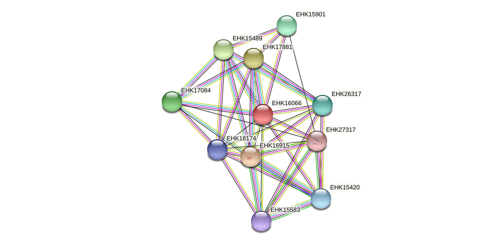 EHK16066 protein (Hypocrea virens) - STRING interaction network