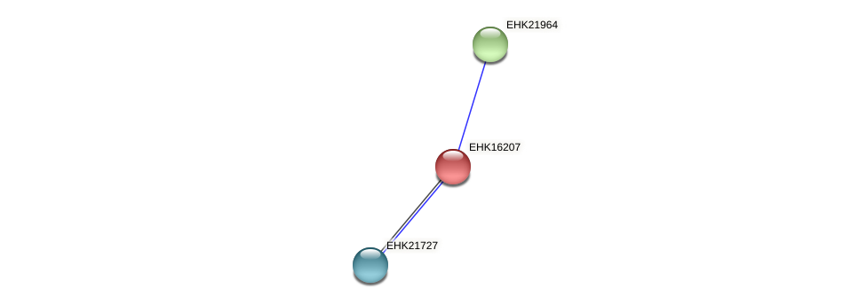 EHK16207 protein (Hypocrea virens) - STRING interaction network
