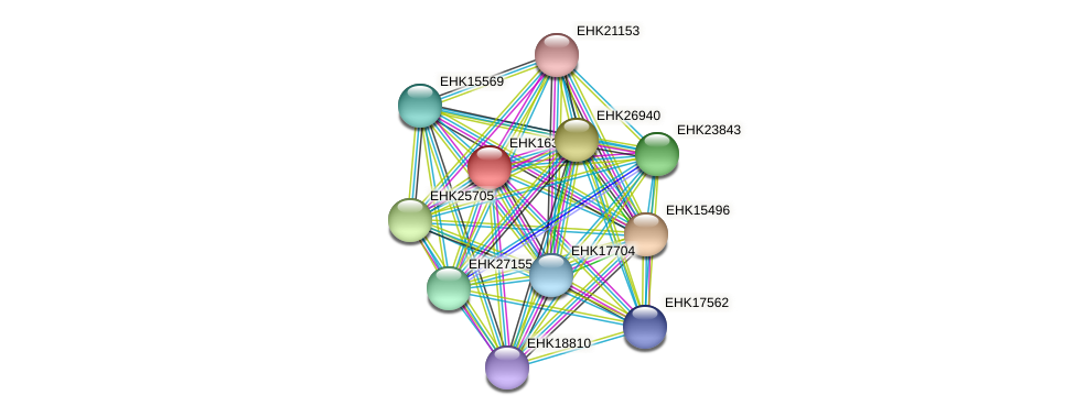 EHK16364 protein (Hypocrea virens) - STRING interaction network