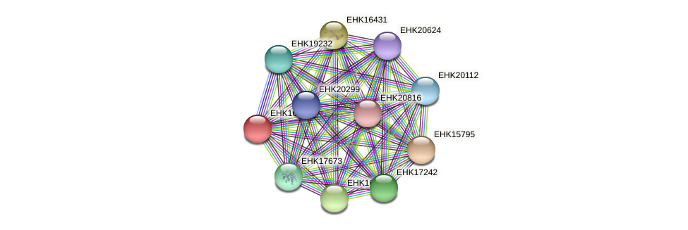 EHK16398 protein (Hypocrea virens) - STRING interaction network
