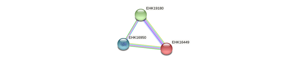 EHK16449 protein (Hypocrea virens) - STRING interaction network