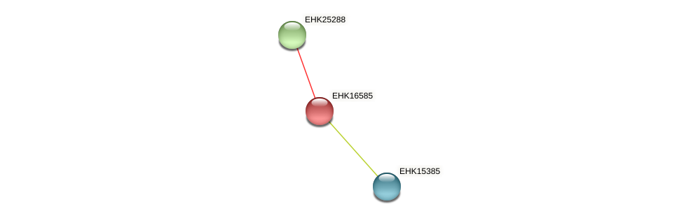EHK16585 protein (Hypocrea virens) - STRING interaction network