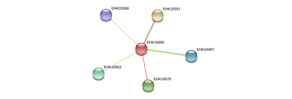 EHK16695 protein (Hypocrea virens) - STRING interaction network