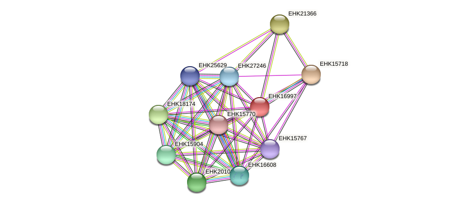EHK16997 protein (Hypocrea virens) - STRING interaction network