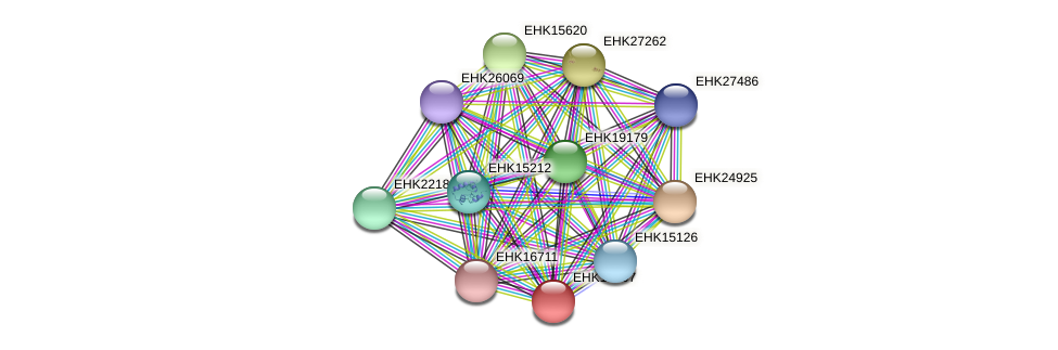 EHK17007 protein (Hypocrea virens) - STRING interaction network