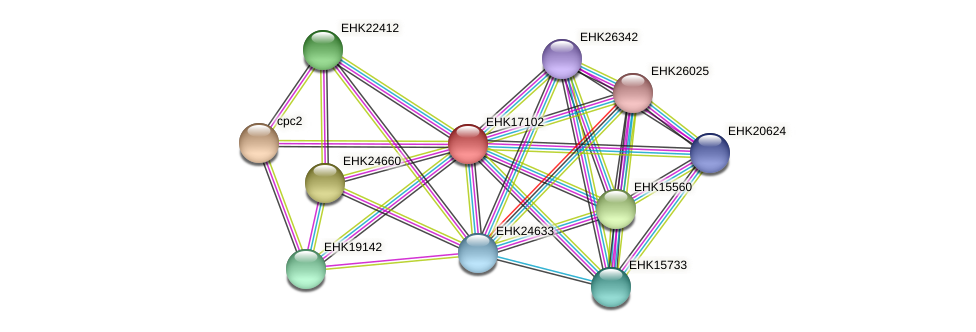 EHK17102 protein (Hypocrea virens) - STRING interaction network