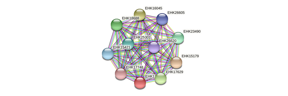 EHK17113 protein (Hypocrea virens) - STRING interaction network