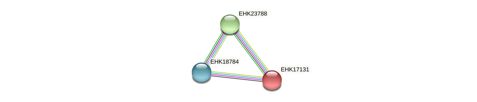 EHK17131 protein (Hypocrea virens) - STRING interaction network