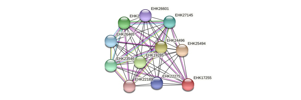 EHK17255 protein (Hypocrea virens) - STRING interaction network