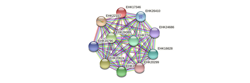 EHK17346 protein (Hypocrea virens) - STRING interaction network