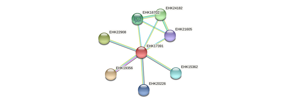 EHK17391 protein (Hypocrea virens) - STRING interaction network