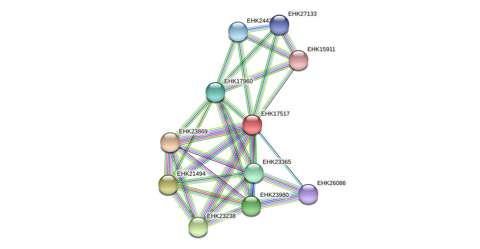 EHK17517 protein (Hypocrea virens) - STRING interaction network
