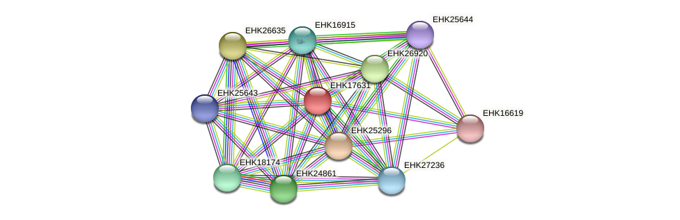EHK17631 protein (Hypocrea virens) - STRING interaction network