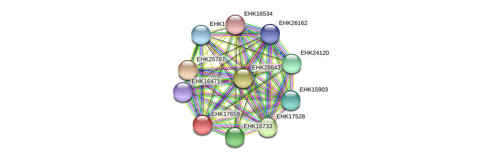 EHK17659 protein (Hypocrea virens) - STRING interaction network