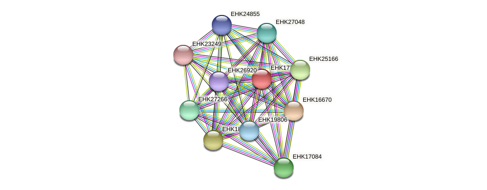EHK17736 protein (Hypocrea virens) - STRING interaction network