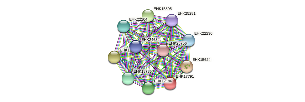 EHK17791 protein (Hypocrea virens) - STRING interaction network