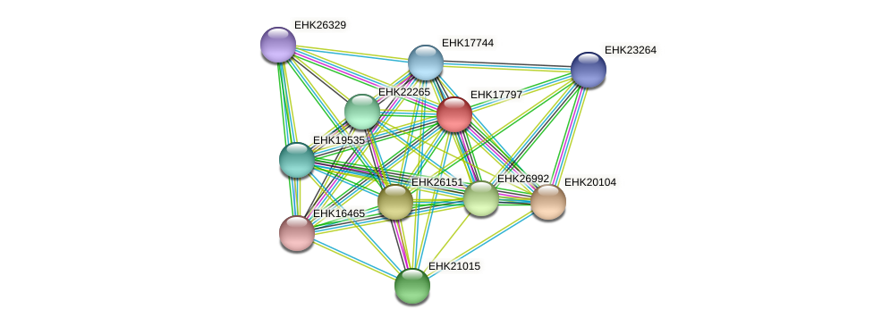 EHK17797 protein (Hypocrea virens) - STRING interaction network