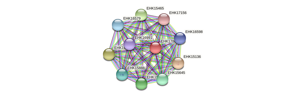 EHK17800 protein (Hypocrea virens) - STRING interaction network