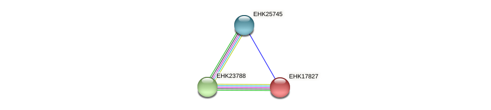 EHK17827 protein (Hypocrea virens) - STRING interaction network