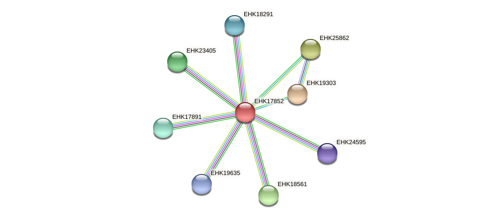 EHK17852 protein (Hypocrea virens) - STRING interaction network