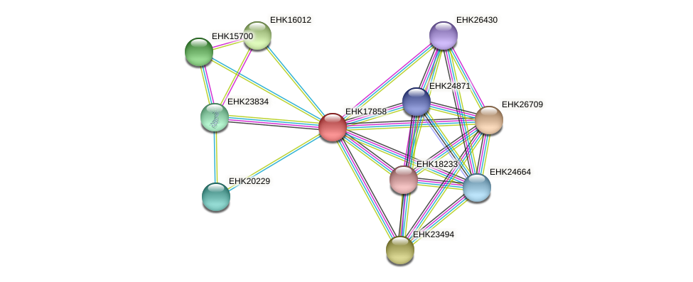 EHK17858 protein (Hypocrea virens) - STRING interaction network