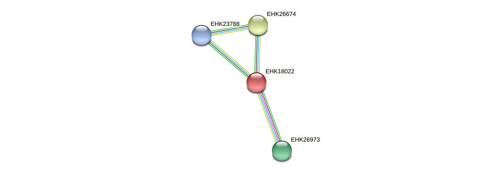 EHK18022 protein (Hypocrea virens) - STRING interaction network