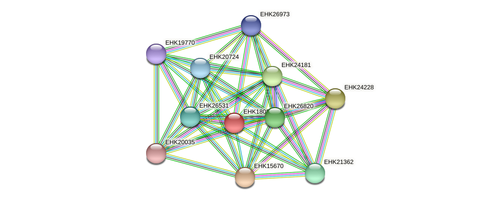 EHK18089 protein (Hypocrea virens) - STRING interaction network
