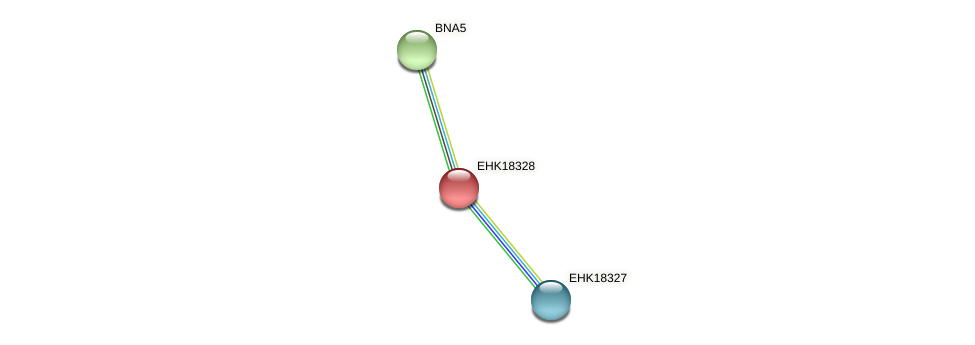 EHK18328 protein (Hypocrea virens) - STRING interaction network