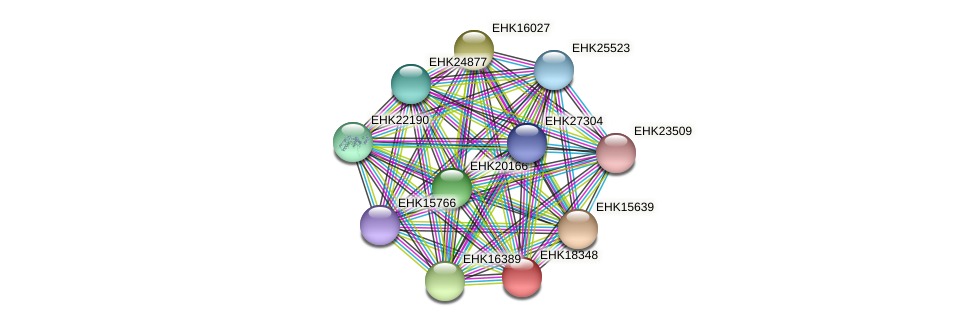 EHK18348 protein (Hypocrea virens) - STRING interaction network
