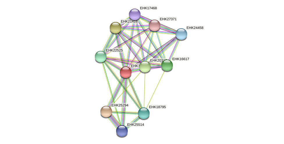 EHK18522 protein (Hypocrea virens) - STRING interaction network