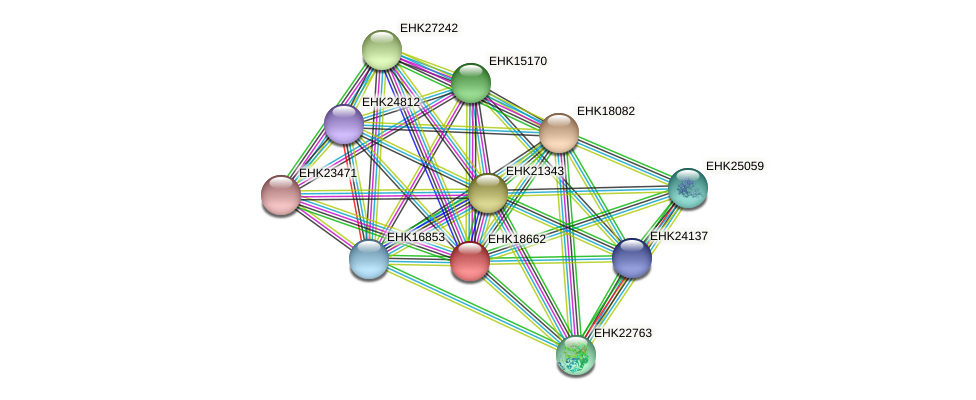 EHK18662 protein (Hypocrea virens) - STRING interaction network