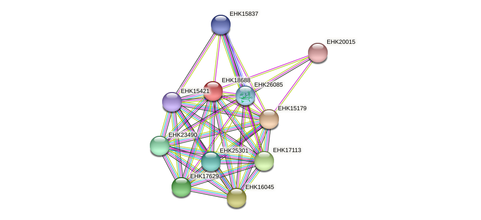EHK18688 protein (Hypocrea virens) - STRING interaction network