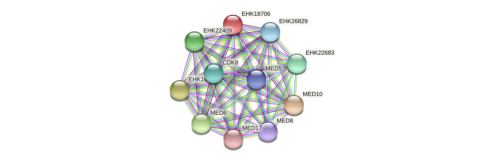 EHK18706 protein (Hypocrea virens) - STRING interaction network