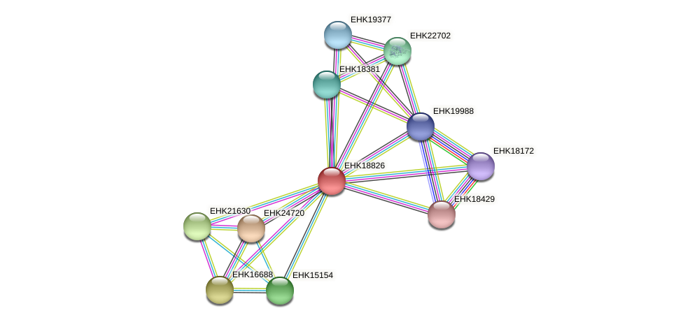 EHK18826 protein (Hypocrea virens) - STRING interaction network