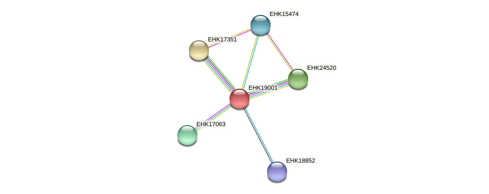 EHK19001 protein (Hypocrea virens) - STRING interaction network