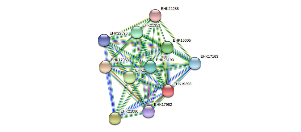 EHK19298 protein (Hypocrea virens) - STRING interaction network