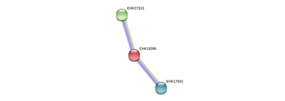 EHK19396 protein (Hypocrea virens) - STRING interaction network
