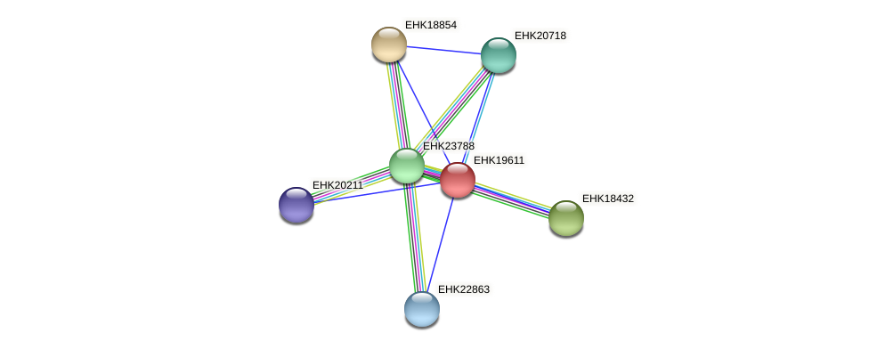 EHK19611 protein (Hypocrea virens) - STRING interaction network