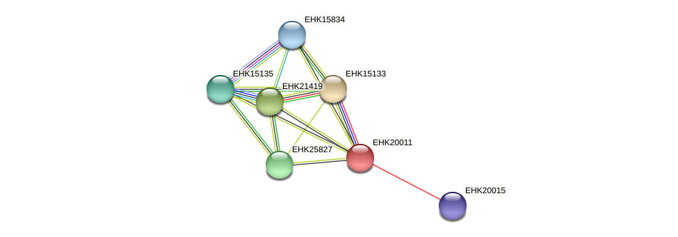 EHK20011 protein (Hypocrea virens) - STRING interaction network