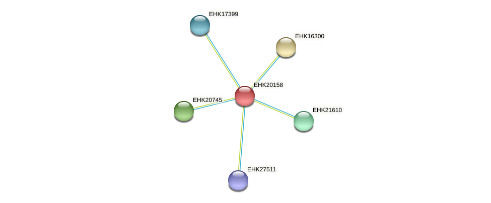 EHK20158 protein (Hypocrea virens) - STRING interaction network