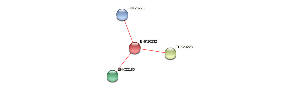 EHK20232 protein (Hypocrea virens) - STRING interaction network
