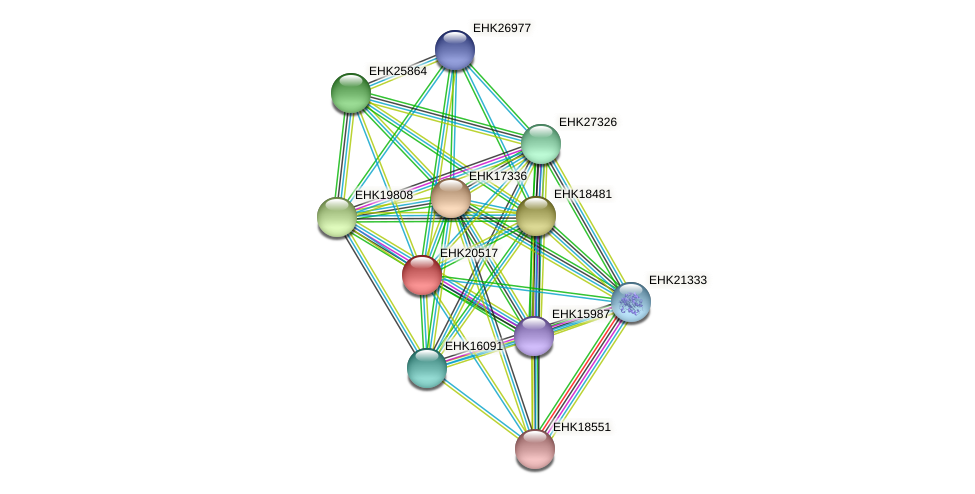 EHK20517 protein (Hypocrea virens) - STRING interaction network