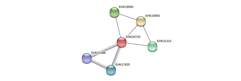 EHK20732 protein (Hypocrea virens) - STRING interaction network