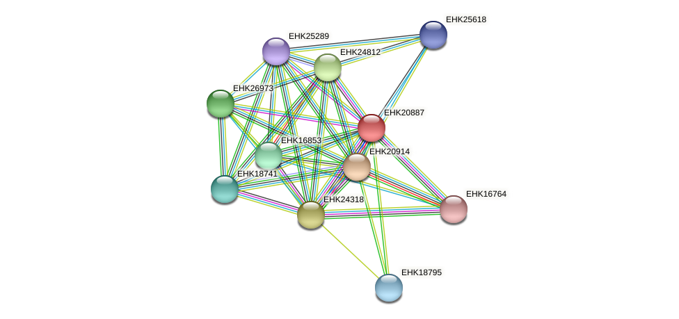 EHK20887 protein (Hypocrea virens) - STRING interaction network