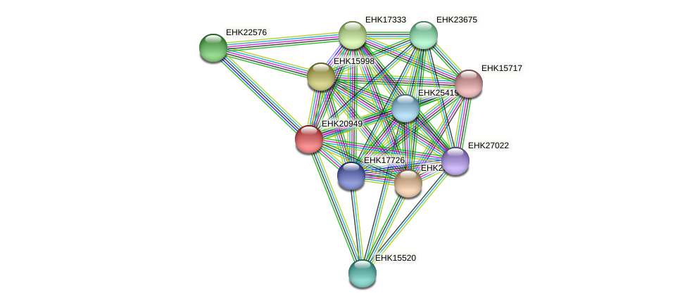 EHK20949 protein (Hypocrea virens) - STRING interaction network