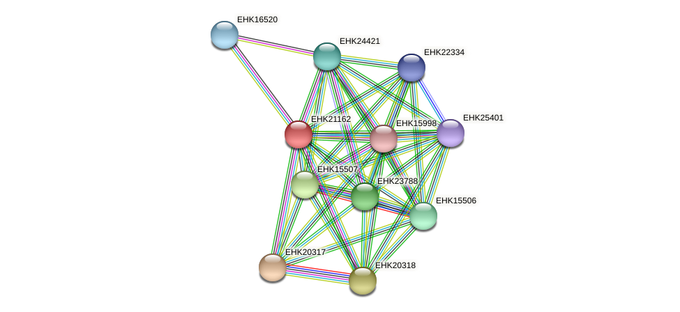 EHK21162 protein (Hypocrea virens) - STRING interaction network