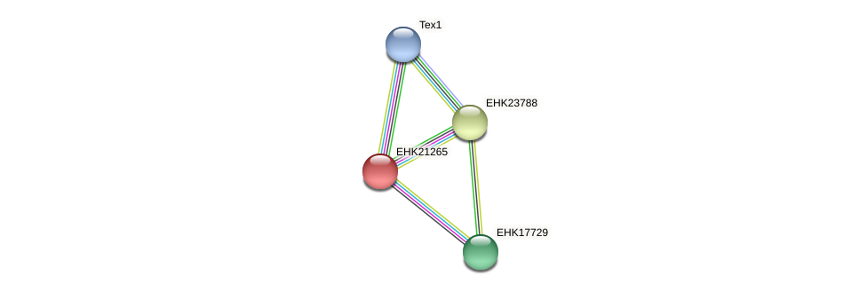 EHK21265 protein (Hypocrea virens) - STRING interaction network